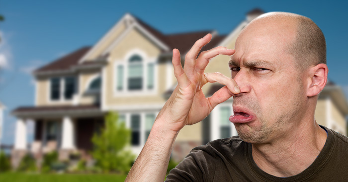 Stinky Homes & Sellers Who Won't Leave the House