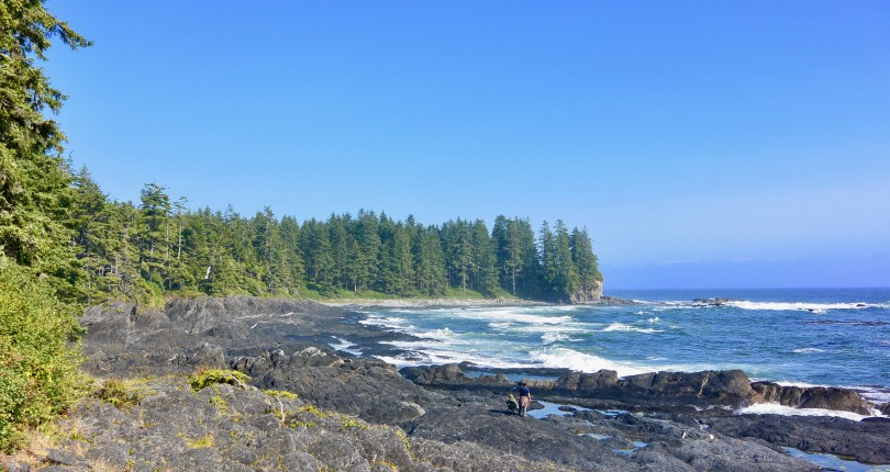 Why are so many people moving to Vancouver Island?